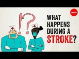 【TED-Ed】中風是怎麼回事? (What happens during a stroke? - Vaibhav Goswami) Image
