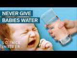 為什麼嬰兒不能喝水 (Why Babies Can't Drink Water) Image