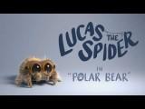【小蜘蛛盧卡斯】北極熊 (Lucas the Spider - Polar Bear) Image