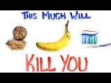 致命的東西其實超級多!2 (This Much Will Kill You 2) (This Much Will Kill You pt.2) Image
