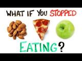 如果你停止進食? (What If You Stopped Eating Food?) Image