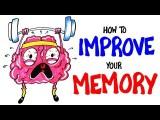 6 大妙招讓你的記憶力馬上升級! (How To Improve Your Memory RIGHT NOW!) Image