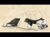 【感人推薦】狗狗的愛、陪伴與拯救 (Mutual Rescue™: Eric & Peety – Short Film) Image