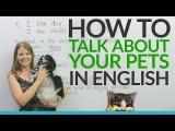 【英文技巧】一起用英文聊聊你家的寵物吧!Real English: Talking about pets and animals Image