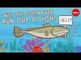【TED-Ed】海裡面的魚會不會有被抓光的一天?(Will the ocean ever run out of fish? - Ayana Elizabeth Johnson and Jennifer Jacquet) Image