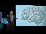 你的大腦如何判定什麼是美的 (How your brain decides what is beautiful | Anjan Chatterjee) Image
