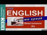 【BBC 英語】「被榨乾」怎麼說? (Bleed someone dry: The English We Speak) Image