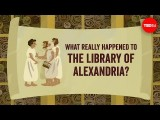 【TED-Ed】神秘的知識寶庫:亞歷山大圖書館 (What really happened to the Library of Alexandria? - Elizabeth Cox) Image