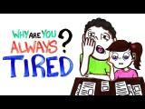 總是感覺疲累?科學家跟你解釋原因 (Why Are You Always Tired?) Image